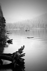 Mammoth Lakes (bolbax102) Tags: canon blackwhite lakes mammoth twinlakes rebelxt pinoy kodakero 30mm28