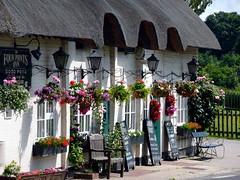 Aldworth, Berkshire (Oxfordshire Churches) Tags: uk england unitedkingdom panasonic pubs berkshire inns windowboxes hangingbaskets aldworth ©johnward lumixtz5 grouptripod fourpointsinn