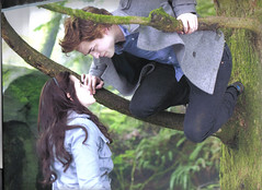 Twilight Calender: October (withlove.erin) Tags: black film reed movie book swan twilight jasper nikki alice jacob ashley jackson edward charlie calender stewart cast kristen billy series bella greene emmett hale kellan lutz cullen robbert rathbone boarders pattinson rosealie