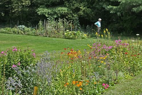 dad by his garden
