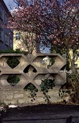 Zierbeton (foddokross) Tags: architecture germany concrete weimar university bricks blossoms elements ddr blte gdr schmuck beton zeitlos schick dufte bauhausuniversitt ostblocj