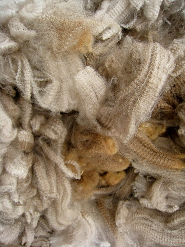 Gorgeous raw fleece