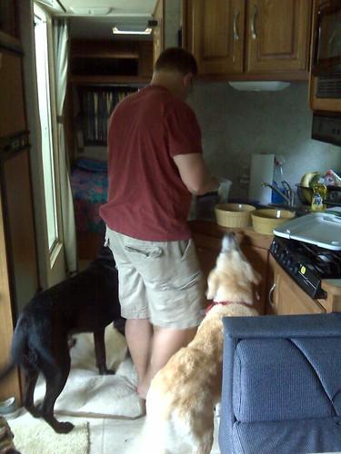 dogs first breakfast