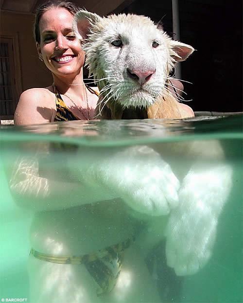 2798827755 e9e6c2d802 o Teaching Wild Animals to Swim