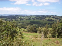 New Zealand landscape (- MattW -) Tags: newzealand travelling forest landscape scenery backpacking