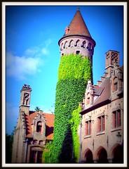 Ivy Covered Tower (scrapping61) Tags: tower belgium brugge ivy 2008 tistheseason blueribbonwinner scrapping61 novavitanewlife empyreantarots miasbest daarklands