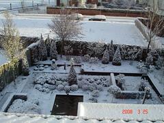 DSC00999 (meerwijkweg) Tags: tuin onze winterse sferen