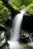 Waterfall, El Yunque, Puerto Rico (jogorman) Tags: white green wet water rain forest flow waterfall moss rainforest rocks stream puertorico el brook slippery damp yunque jamesogorman platinumphoto
