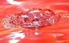 Splash! (hiskinho) Tags: macro water rouge reflex rojo agua waterdrop corona reflejo crown gota splash cristal vaso wasse raynoxdcr250 colourartaward