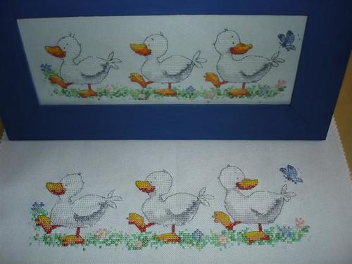6 canards