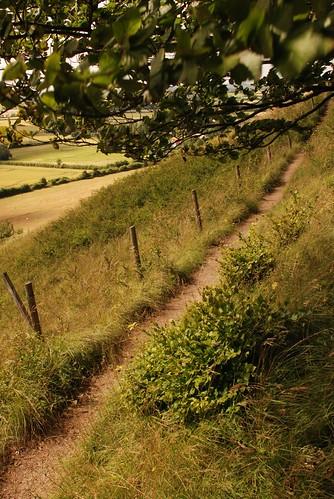 1 acre - path