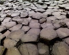 Octagons, septagons and hexagons (benleto) Tags: ireland irish heritage beach wet site rocks stones famous windy landmark repetition giants hexagons northern feature giantscauseway causeway antrim geological octagons coantrim northantrim septagons