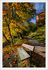 Sit With Me (szefi) Tags: autumn color fall leaves canon foliage canon450d goldenphotographer canonrebelxsi vosplusbellesphotos goldenmasterpiece