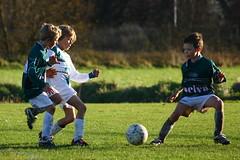 VDP - OLVE : 0 - 10 (VDP Sport fotograaf) Tags: football fussball soccer jorn futbol futebol voetbal kvv pupillen boyssoccer youthsports youthfootball vdp youthsoccer olve futbolbase vdpsport jeugdvoetbal futbolinfantil koninklijkevlaamsevoetbalbond