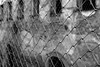 (Rafael Coelho Salles) Tags: brazil brasil photographer photos professional sp santos fotos professionalphotographer fabiola fotografo varal profissional rscsales varalfotografico direçãodearte direcaodearte fabiolamedeiros varaldefotos fotografoprofissional rscsallescom direçaodearte rafaelsallescom varalsantos oficinacomfabiolamedeiros varalda1ªmaratonafotograficadesantos varaldesantos