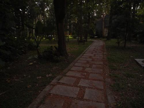 你拍攝的 7昏暗的園區。