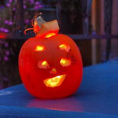 Funky pumpkins 4 HDR