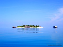 Just one from all the gems ( Ahmed Amir) Tags: blue sea vacation sky cloud holiday reflection tree water beautiful fun island amazing nice sand scenery holidays paradise afternoon mosaic unique awesome horizon peaceful olympus scene hut amir stunning unclassified float maldives ahmed breathtaking gem jewel impressedbeauty visiongroup flickrchallengegroup absolutelystunningscapes goldenart novavitanewlife flickrclassique