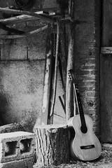 A Chitarra do vinu (Francesco Macr (www.luceinversa.it)) Tags: bw music white black folk bn campagna note musica bianco nero chitarra bacchetta corde popolare tradizioni chitarrabattente zuccu bloccu