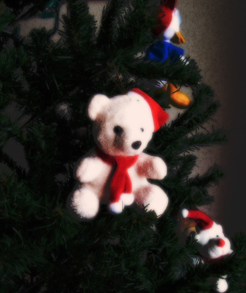 Teddy bear on the tree