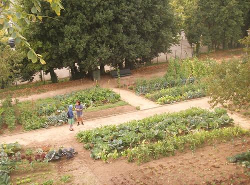 Permacultura: como aprovechar  los recursos Naturales