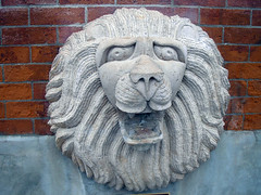 Old Market: The Lion!