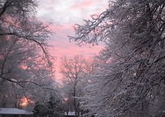 snowy sunrise (UncommonGrace) Tags: thankful