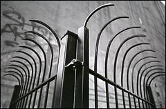 (L. Buckholz) Tags: nikon gate trix f100 diafine pan elbarrio spanishharlem