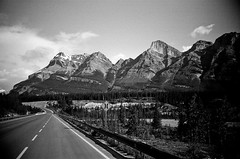 somewhere in banff national park (sashafatcat) Tags: park blackandwhite bw mountains rockies rocky national banff banffnationalpark