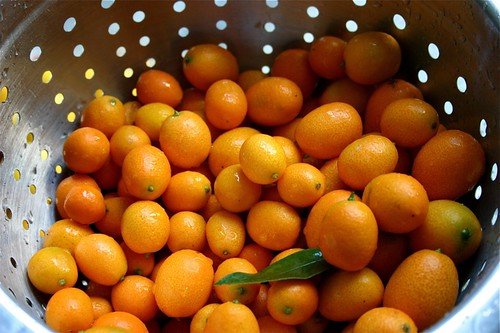 washing kumquats