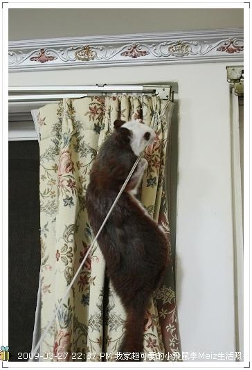 09年二三月小飛鼠Meiz生活照 (22)