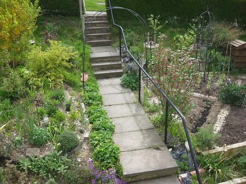 Path 1st May 2010