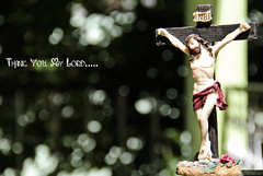 Thank you my Lord for new Canon 550D (Kanishka **) Tags: canon dof bokeh jesus lord kanishka 18135mm kanishkasamrat canon550d
