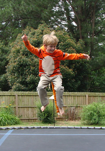 jumping Jack the tiger by Jacks mom