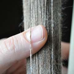 Alpaca - Silk single