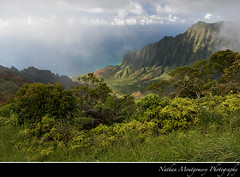 Kalalau Valley (Nate Montgomery) Tags: mountains fern green fog canon hawaii paradise pacificocean kauai kalalauvalley gardenisland napalicoast 2011 kokeestatepark natemontgomery nathanmontgomeryphotography