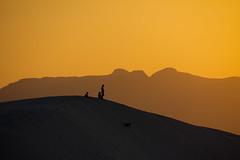 Dune sledding (Frozen Image Photography) Tags: matchpointwinner thechallengefactory doublyniceshot thepinnaclehof kanchenjungachallengewinner tphofweek110 frozenimagephotography