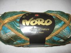 Noro sock yarn from Florida