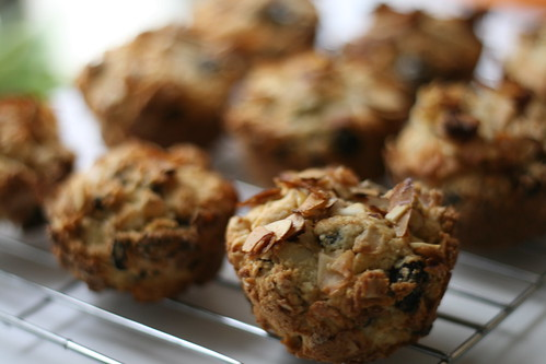 coconut muffins (by mintyfreshflavor)