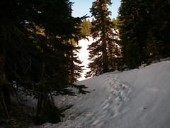 Mason Lake Old Trail