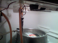 ale extractor in cellar at Max's Taphouse