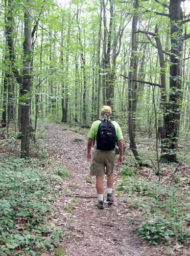 Hiking the Interloken trail
