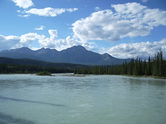 Athabasca River in Jasper (joadc) Tags: river athabasca