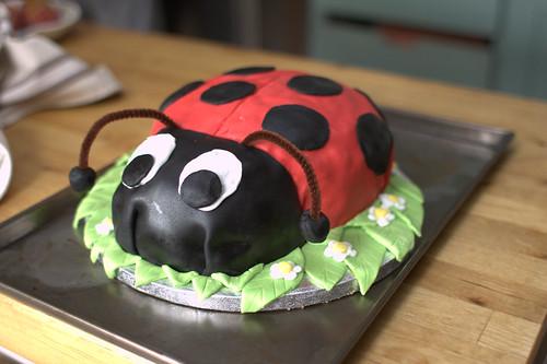 Karen's ladybird cake