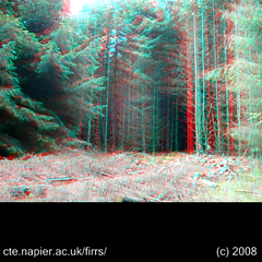 3D tree felling (anaglyph) (Dan (aka firrs)) Tags: wood uk trees tree forest scotland video stereoscopic 3d university forestry timber chainsaw logging anaglyph science stereo research logger napier lumberjack felling harvesting silviculture redcyan