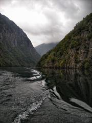 Nevena Uzurov - Drina (Nevena Uzurov) Tags: mountain river tara serbia valley srbija drina планина река србија дрина perućac venkane пејзаж тара перућац невенаузуров