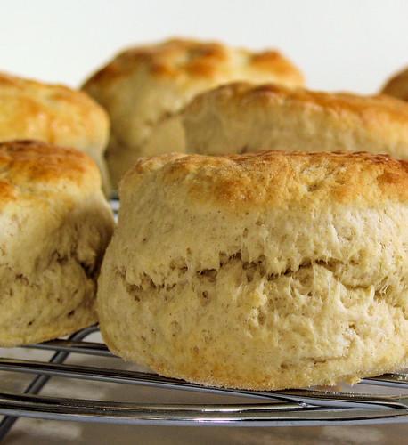 fresh scones 4786