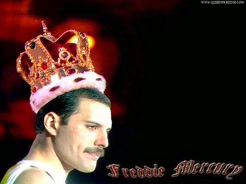 Freddie Mercury Wallpaper 48 A Photo On Flickriver