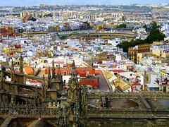 Sevilla (Graça Vargas) Tags: españa canon sevilla spain cathedral plazadetoros ph227 graçavargas ©2008graçavargasallrightsreserved larealmaestranza 5003041208