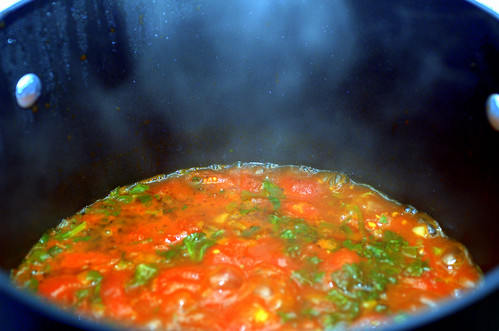 spicy tomato soup with cilantro